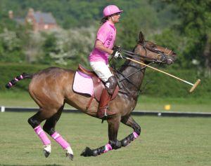 Pink polo horse